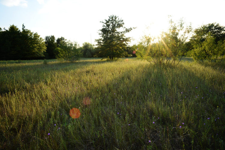 Hidden Creek RV | Escape The Ordinary